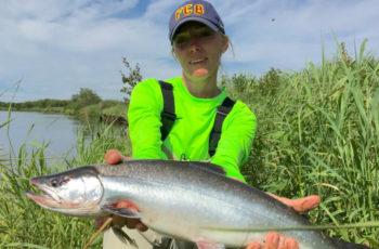 Промысловые рыбы на Камчатке